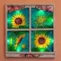Słoneczniki w oknie. Czerwiec 2008. (z podświetleniem)
